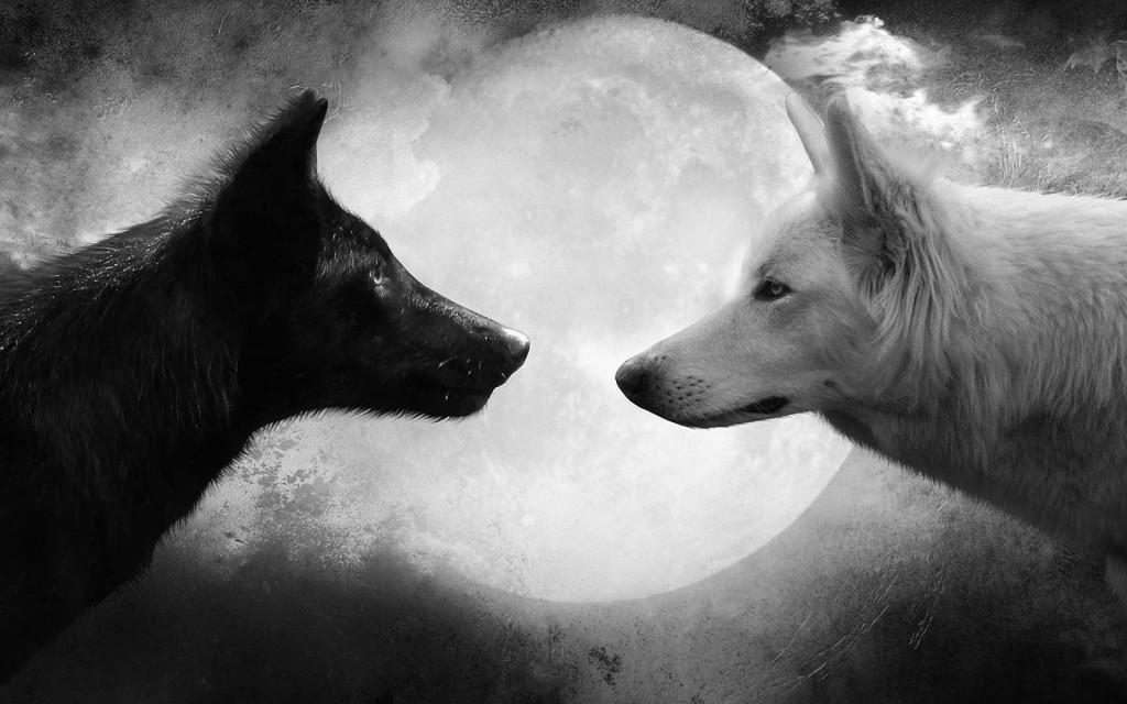 Wolf-Moon